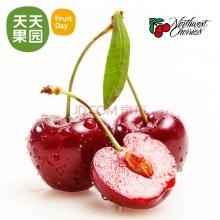 美国西北车厘子 1斤装 进口水果新鲜樱桃水果