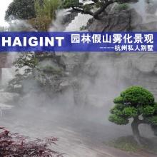 HAIGINT海景景观喷雾设备造雾机雾森景观主机喷雾主机雾化装置